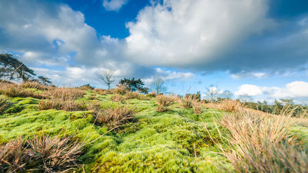 veluwe: Deteriorating weather clouds over protected nature landscape in Spring Stock Photo