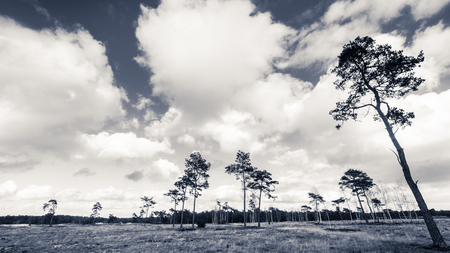 nature landscape: Deteriorating weather clouds over protected nature landscape in Spring Stock Photo