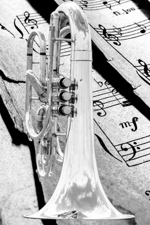 marching: Close up of a detached silver marching baritone.