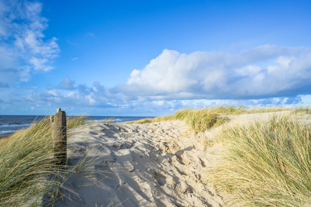 texel: View on the beach from the sand dunes in the Netherlands