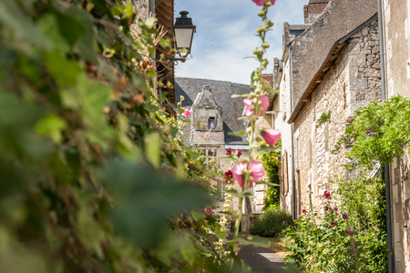 vistas: Scene in Crissay-sur-Manse, typical French village with charming and romantic images and vistas, village in the Loire Valley.