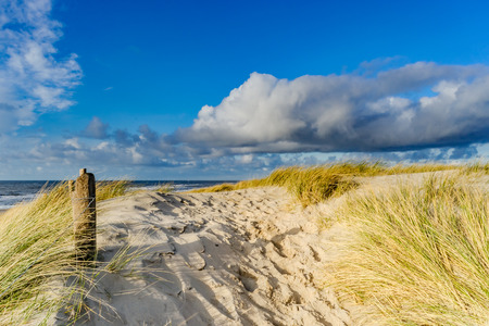 View on the beach from the sand dunes in the Netherlands 免版税图像 - 65888508