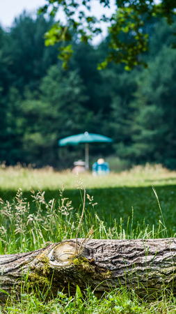 Elderly couple enjoying in the forrest of the rest under an umbrella and two chairs Stock Photo