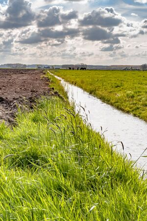 Transition between landscape with lines. Plowed field with green grassland ne intermediate ditch in a Dutch polder