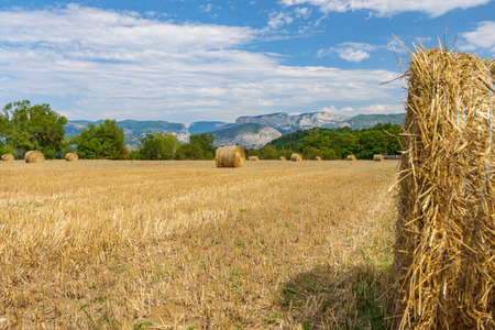 French countryside with agricultural hay fields and rolled hay bales. In the background the mountains of the Alps and the provence Фото со стока