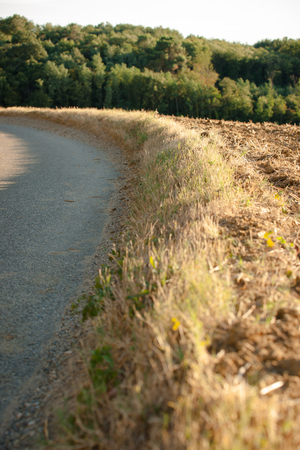 curve road: Dried grass in the side of the road along a country road in the French landscape Stock Photo