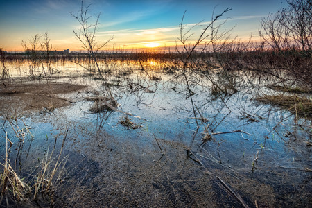 Flooded grass field and floodplains with a beautiful view of the flat landscape in the netherlands in the river delta with reflection in the water. photo made between Kampen and Zwolle in the province of Overijssel
