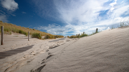 Beautiful photo along the Dutch coast strip with sand dunes on a sunny, windy storm day. Swaying dune grass and staggering sand dunes under an impressive cloudy sky Фото со стока