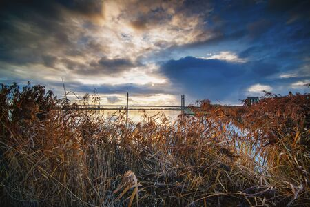 The ijssel river at overijssel camps with a view of the bridge and reed collar Stockfoto