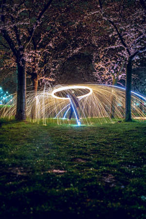 Sparkling fireworks in city park with blooming cherry blossom avenue 免版税图像
