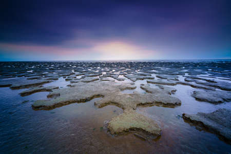 Panoramic view over the tidal flats along the shore of the netherlands with Wadden sea in distance and sky with rain clouds