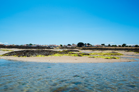 view on le petit vieil from in the water with sand in summertime on the isle of Noirmoutier Фото со стока