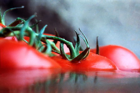 Closeup of tomatoes floating in water