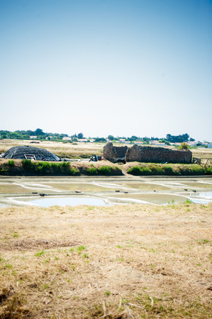 View on a Saline with water and old stocking house in summertime on the isle of Noirmoutier in France