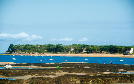 view on  bois de la Chaise from le petit vieil on the isle of noimoutier in summertime with some boats on the sea