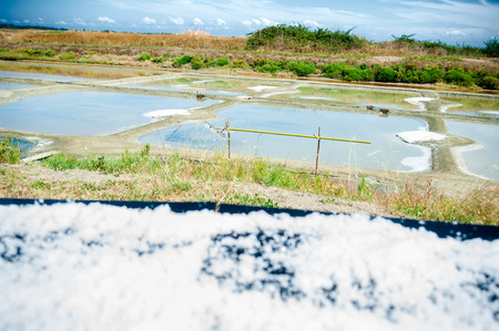 View on a Saline with water and table with drying salt in summertime on the isle of Noirmoutier in France