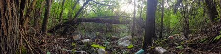 panorama of abondoned waste in a forest containing a lot of plastic bottles