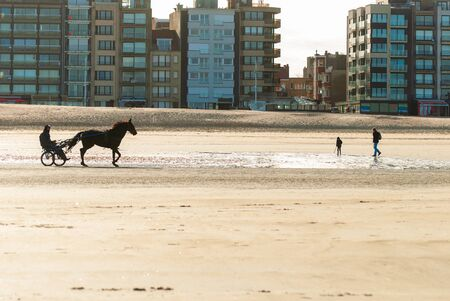 Training a racehorse on the beach in a hard autumnal light with some buildings in the background