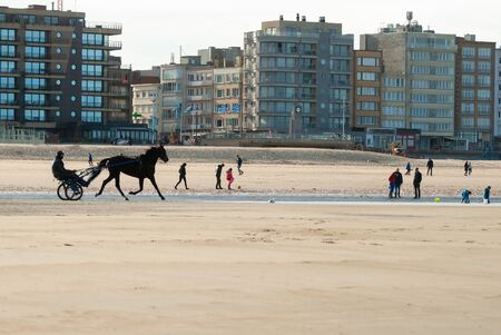 Training a racehorse on the beach at autumn with some buildings in the background Фото со стока