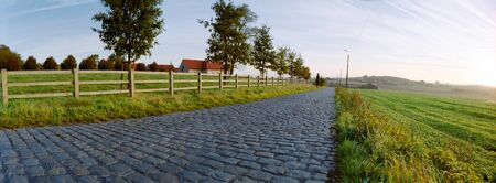 paving sett road in warm golden autumnal sunlight with a grass field on the right side and some trees