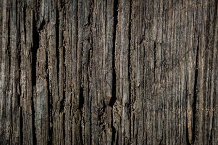 closeup of a old rustic wood plank 写真素材