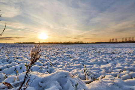 white snow on a large field with sunset