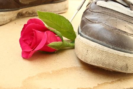 desprecio: Shoe pisotean rosa, el amor y el concepto de corazón roto
