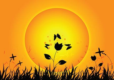 Natur mit Sonnenuntergang