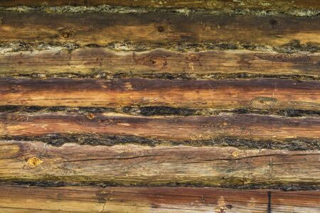 Background from old logs of a wooden house.