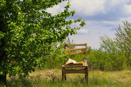 Old open book with a cup on a vintage chair in a beautiful spring garden Stockfoto