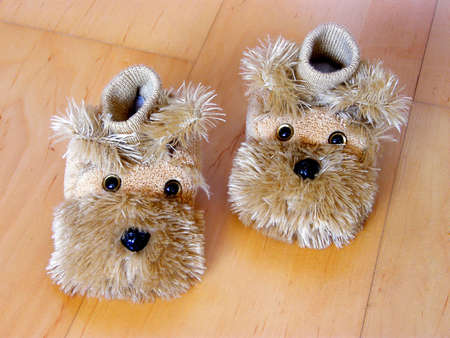 snugly: childs shoes as two little dogs on the laminate ground