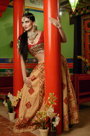 national costume: Young beautiful girl in Indian national costume Stock Photo