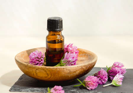 Selective focus on Trifolium pratense the red clover tincture bottle with picked blossoms for decoration studio shot. Stock fotó