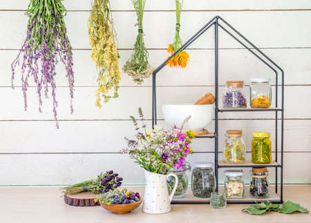 Collection of various herbal medicinal plants dry in glass jars and drying on wall. Modern shelf with jars mortar and pestle and bouquet of herbal wildflowers in ceramic jug. Retro vintage filter.