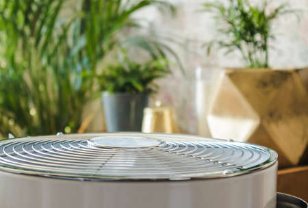 Selective focus on home air cleaner ventilator fan machine in home living room, houseplant grow on background. Allergy and dust free home concept.