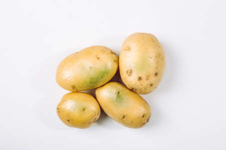 Sunlight and warmth turn potatoes skin green witch contain high levels of a toxin, solanine which can cause sickness and is poisonous. Do not buy and eat green potatoes! Stock Photo