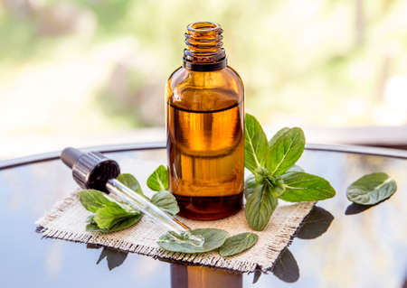 Peppermint essential oil or infusion in brown medical pipette bottle with decorative fresh mint branches on glass table, blur background.