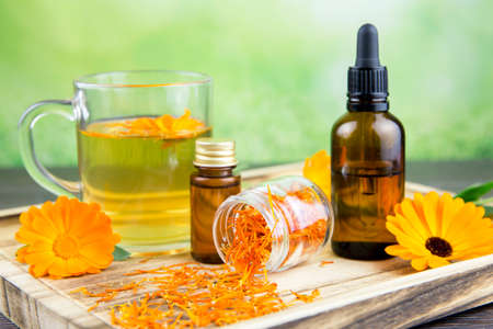Calendula officinalis, the pot marigold, ruddles, common marigold or Scotch marigold different health products on wooden tray, essential oil, tincture, herbal tea, fresh and dried blossoms fresh green