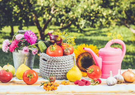 Fun and playful set of different vegetables and fruits on the table with bucket full of asters and pink watering can outdoors in autumn, harvest concept. Blur outdoors background, studio light.