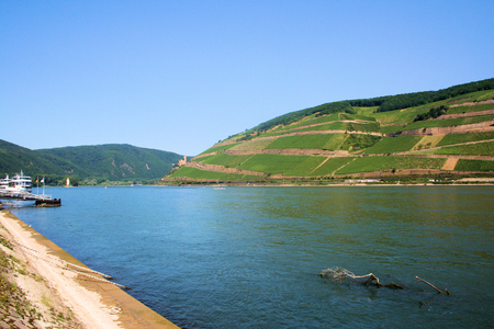 View of the Rhine in the Middle Rhine Valley near Bingen.