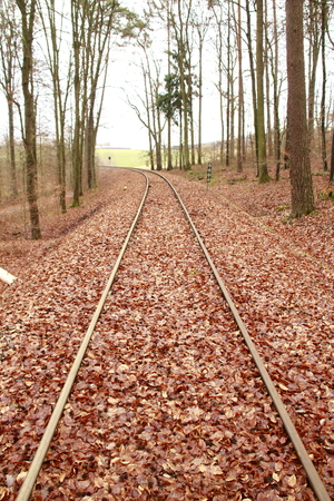 Railway tracks run straight away from the viewer