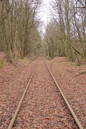 Railway tracks run straight away from the viewer