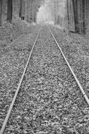 Railway tracks run straight away from the viewer. The picture was developed in black and white. Stockfoto - 117487888