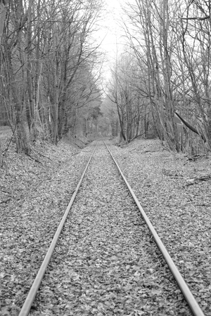 Railway tracks run straight away from the viewer. The picture was developed in black and white. Stockfoto - 117487891