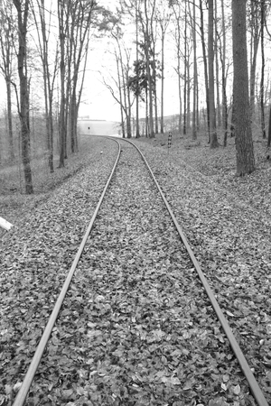 Railway tracks run straight away from the viewer. The picture was developed in black and white.