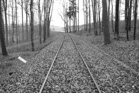 Railway tracks run straight away from the viewer. The picture was developed in black and white. Stockfoto - 117487946