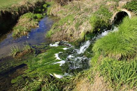 Algae formation in the outlet of a sewage treatment plant Stock Photo