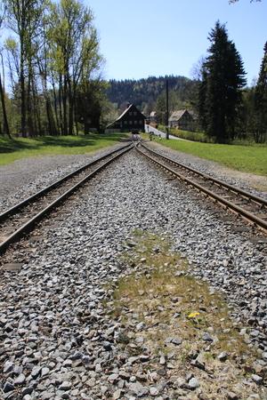 Terminal and siding in the station of Jonsdorf near Zittau
