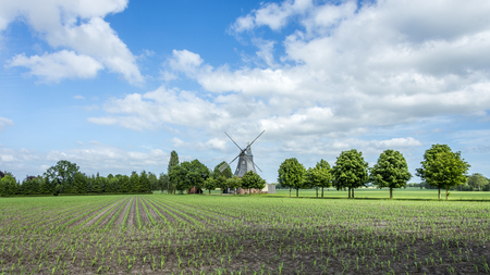Old dutch windmill at landscape with trees and blue sky in background Archivio Fotografico - 97867708