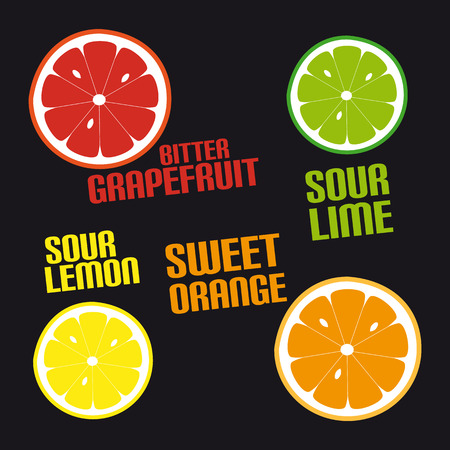Citrus Fruit Icons - Vector Illustration - Isolated On Black Background